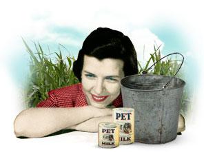 pet milk by stuart dybek essay