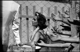 Image from Suddenly Last Summer